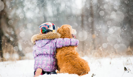 Keep your pet warm and safe this winter with tips from Mount Tabor Animal Hospital in Winston-Salem, NC